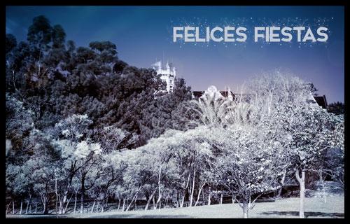 """""""Felices"""